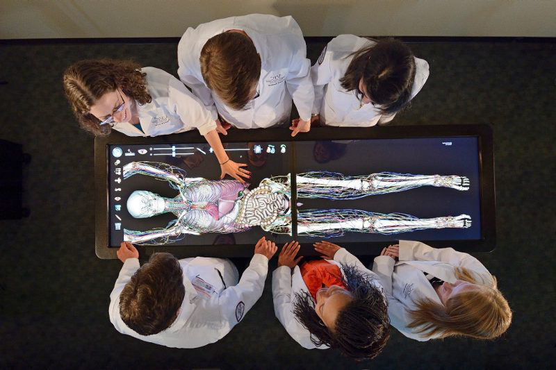 Medical students standing over an Anatomage Table.