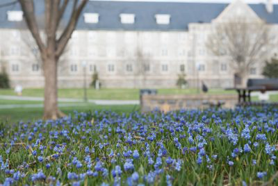 Image of Virginia Tech campus during spring.